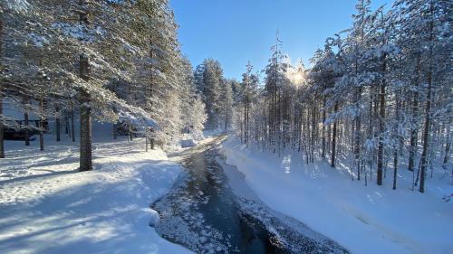 . Lapiosalmi Wilderness Center