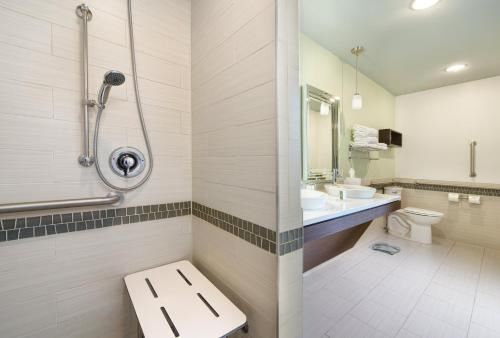 Accessible 1 King Penthouse Studio with Roll In Shower