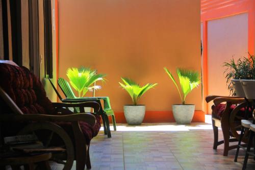 Hotel Apartamentos Mansión Tropical