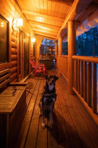 Baker Creek Mountain Resort - Accommodation - Lake Louise