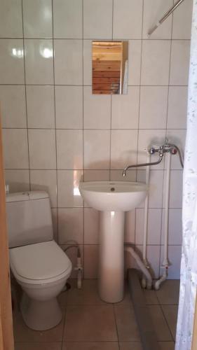 Romashka Guest House, Slavgorodskiy rayon