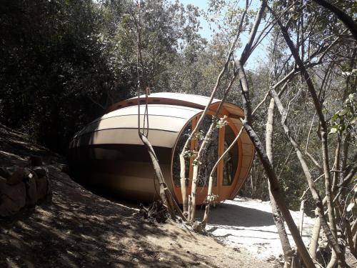 Biosfera Lodge - Photo 6 of 86