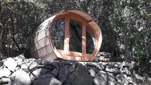 Biosfera Lodge - Photo 8 of 86