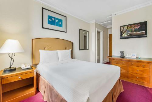 Travelodge by Wyndham Downtown Chicago - Chicago, IL IL 60605