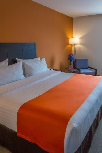 Photo - Holiday Inn Express Tegucigalpa