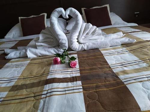 Hotel David - Košice