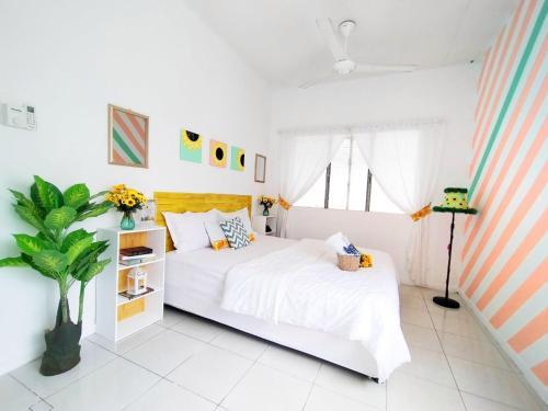 Creative Guesthouse And Cafe, Kota Kinabalu