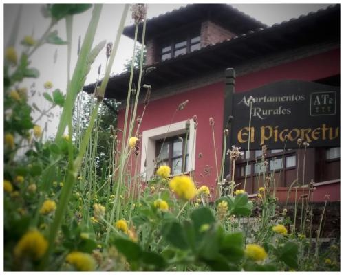 . Apartamentos Rurales El Picoretu
