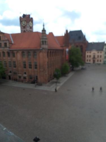 Hotel-overnachting met je hond in Apatrament Joasi - Toruń - Stare Miasto