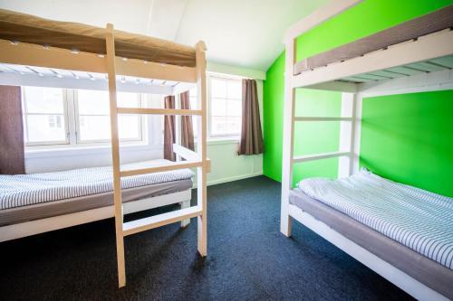 Hotel-overnachting met je hond in Tromso Activities Hostel - Tromsø