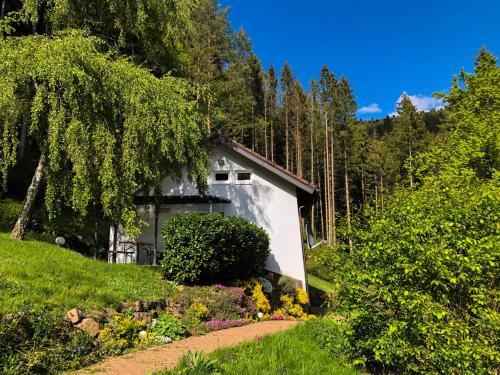 Surrbach Chalet - Baiersbronn