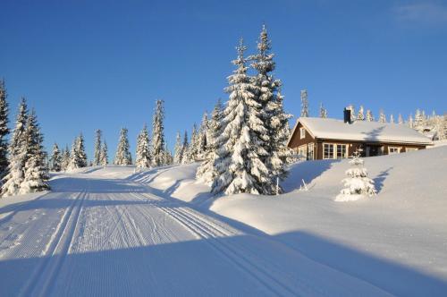 Tores hytte på Sjusjøen - Hotel