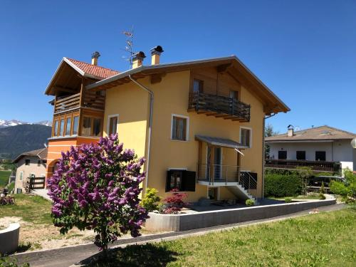 Casa Elisa Apartments - Sarnonico