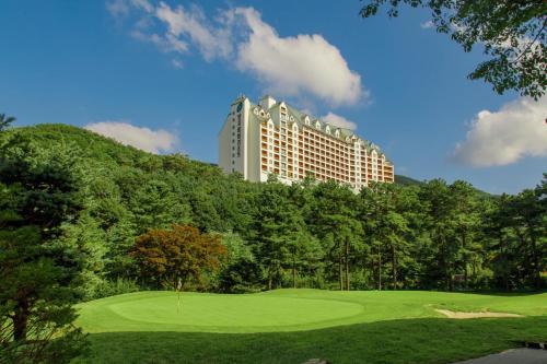 Yangji Pine Resort - Accommodation - Yongin