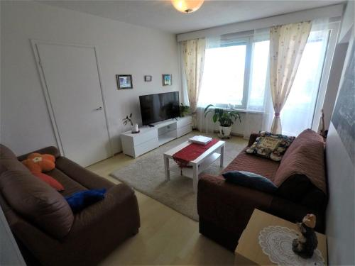 City centre apartment Siilinjarvi