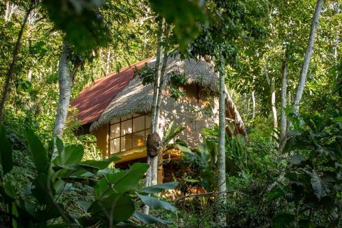 Hotel Shimiyacu Amazon Lodge