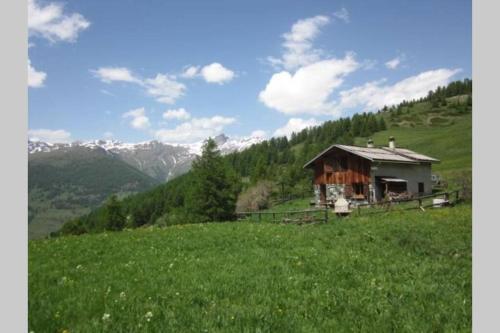 Chalet d'alpage Le Lauzeron - Aiguilles