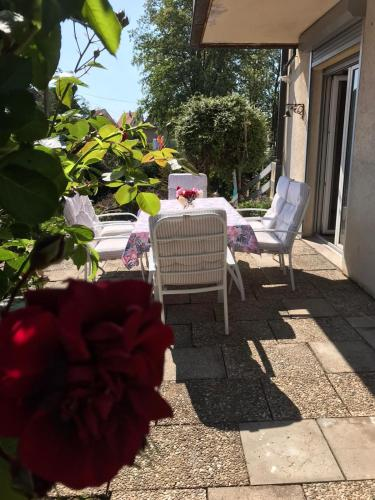 Appartement les mirabelles entre Strasbourg et Haguenau - Apartment - Bischwiller