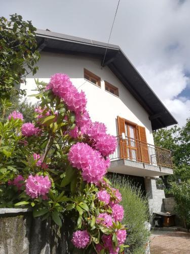 Ollasio18 - Apartment - Giaveno