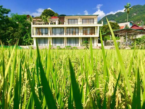 Mai Chau Green Rice Field Hotel