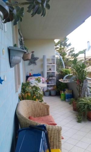 . Apartment with one bedroom in Pescara with enclosed garden 100 m from the beach