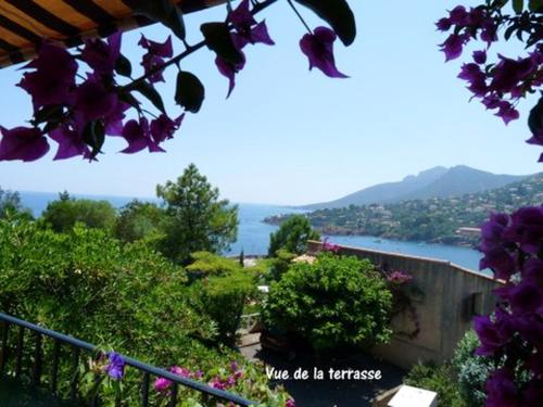 . Studio in Theoule sur Mer with wonderful sea view furnished terrace and WiFi 400 km from the beach
