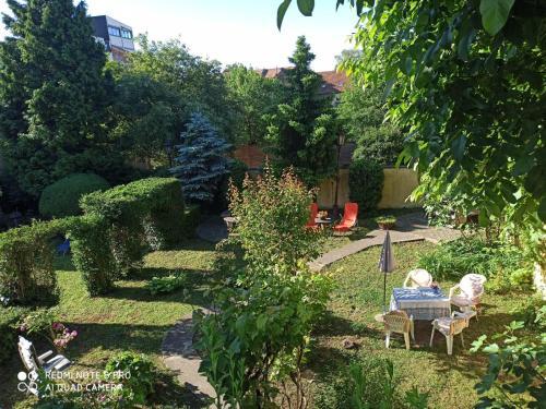 . Cocic Garden