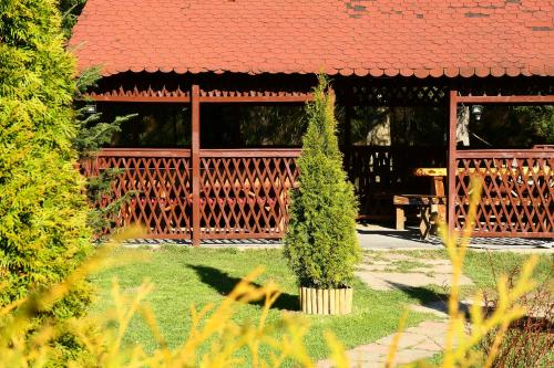 Top Mountain - Hotel - Poiana Brasov