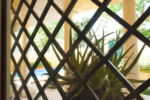 Habitación Doble - Planta baja Hotel Boutique Villa Lorena by Charming Stay 19