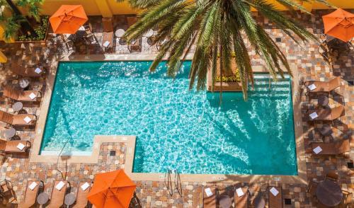 Embassy Suites Hotel Orlando-Int'L Dr. South/Conv. Center