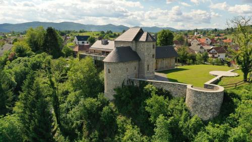 . Vinica Castle