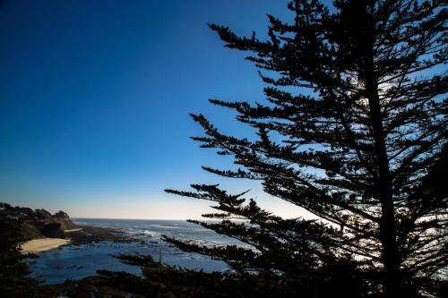 Seal Cove Inn - Moss Beach, CA CA 94038