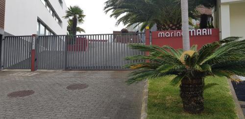 Marina Mar Ii - Photo 7 of 116