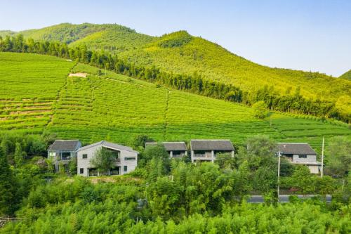 . Wangshan Country House