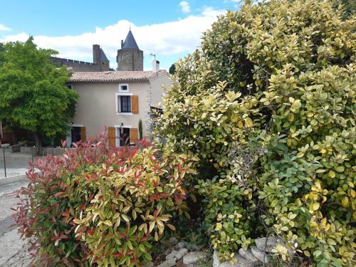 Domaine Fontgrande Gîte - Location saisonnière - Carcassonne
