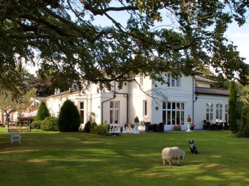 Wrexham Llyndir Hall Hotel, Bw Signature Collection