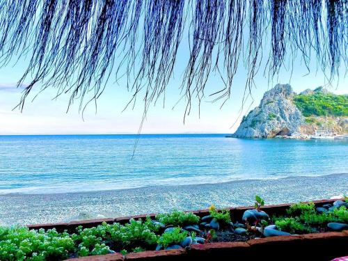 Datca Masal Gibi Plaj&Restaurant - Accommodation - Datca