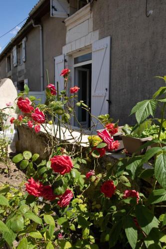 The Pretty Bucolic House - Location saisonnière - Poitiers