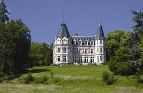 Kasteel-overnachting met je hond in Château De L'aubrière - Les Collectionneurs - La Membrolle-sur-Choisille