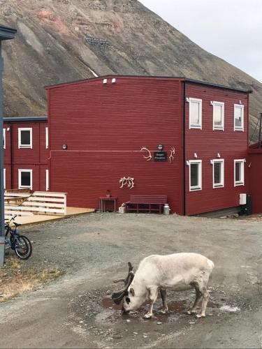 . Haugen Pensjonat Svalbard
