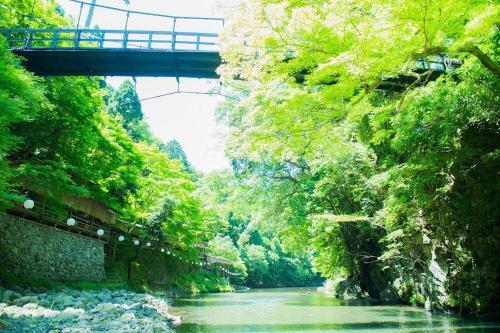 Sun Members Kyoto Saga
