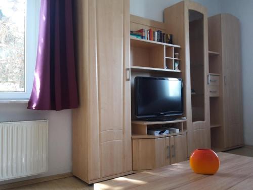 Ferienwohnungen in Dresden - Apartment