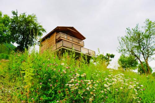Villa Dabderr Mestia - Accommodation