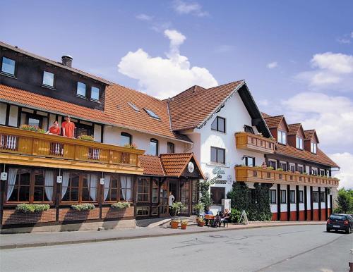 . Hotel Igelstadt