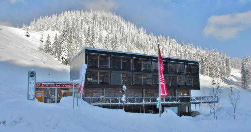 Holzbox Niederalpl - Accommodation - Mürzsteg