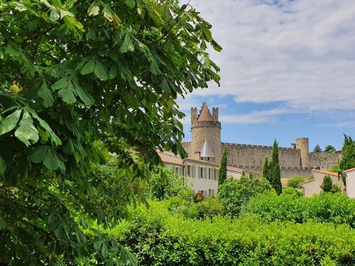 Les Jardins de la Majore - Location saisonnière - Carcassonne