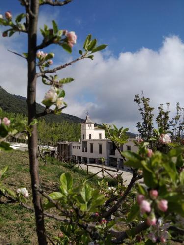 Accommodation in Busquístar