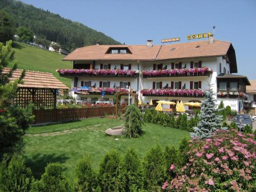 Hotel Pausa