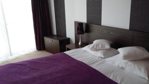 Hotel Niepolomice - Photo 3 of 74
