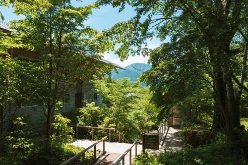 Hakone Retreat Fore